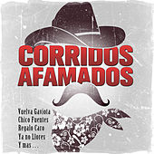 Play & Download Corridos Afamados - Vuelva Gaviota, Chico Fuentes, Regalo Caro, Ya No Llores y Mas by Various Artists | Napster