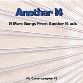 Another 14 by Various Artists