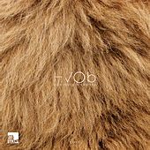 Lion (Remixes) by Hvob