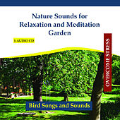 Nature Sounds for Relaxation and Meditation Garden - Twittering Birds by Rettenmaier