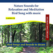 Play & Download Nature Sounds for Relaxation and Meditation Bird Song with music - In the forest by Rettenmaier | Napster