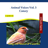 Play & Download Animal Voices Vol. 3 Canary - Song and Sound of Canaries by Rettenmaier | Napster