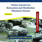 Nature Sounds for Relaxation and Meditation - Mountain Stream - Sound of a Brook by Rettenmaier