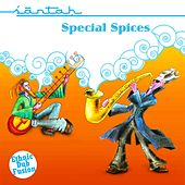 Play & Download Special Spices by Santah | Napster