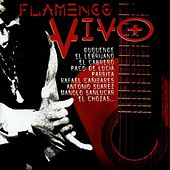 Play & Download Flamenco Vivo by Various Artists | Napster