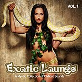 Play & Download Exotic Lounge (From Buddha Oriental India Chillout to Cafe Balearic Ibiza Collection) by Various Artists | Napster