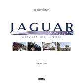 Jaguar on the beach (Porto Rotondo) by Various Artists