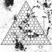 Play & Download Betrayed In The Octagon by Oneohtrix Point Never | Napster