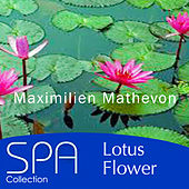 Play & Download Collection Spa: Lotus Flower by Maximilien Mathevon | Napster