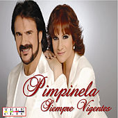 Play & Download Siempre Vigentes by Pimpinela | Napster