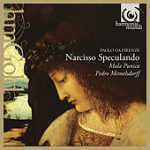 Play & Download Paolo da Firenze: Narcisso Speculando by Various Artists | Napster