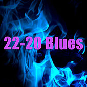 Play & Download 22-20 Blues by Skip James | Napster