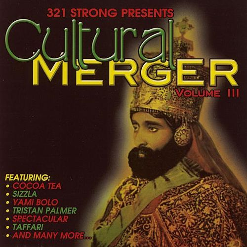 Play & Download Cultural Merger Vol. 3 by Various Artists | Napster