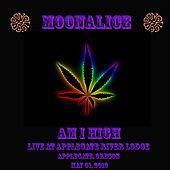 Am I High (Live) by Moonalice