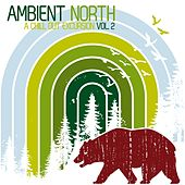 Ambient North - A Chill Out Excursion, Vol. 2 by Various Artists