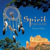Spirit Dreams by Tomas Walker