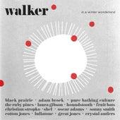 Walker in a Winter Wonderland von Various Artists