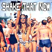 Play & Download Shake That Now by Various Artists | Napster