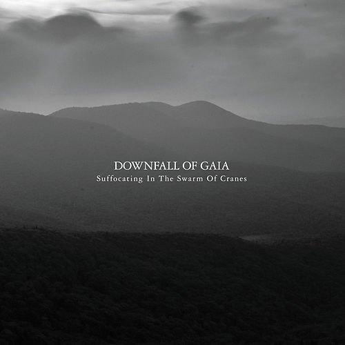 Suffocating in the Swarm of Cranes by Downfall of Gaia