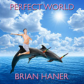Perfect World by Brian Haner