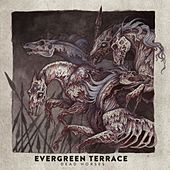 Dead Horses by Evergreen Terrace
