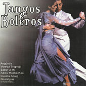Play & Download Tangos e Boleros by Various Artists | Napster