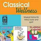 Play & Download Classical Wellness by Various Artists | Napster