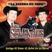 14 Exitos En Vivo by Los Sementales De Nuevo Leon