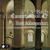 Play & Download J.S. Bach: Cantatas Vol. 12 by Amsterdam Baroque Orchestra | Napster