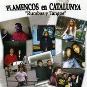 Flamencos en Catalunya: Rumbas y Tangos by Various Artists