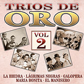 Play & Download Trios de Oro, Vol. 2 by Various Artists | Napster