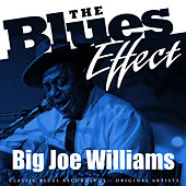 Play & Download The Blues Effect - Big Joe Williams by Big Joe Williams | Napster