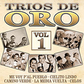 Trios de Oro, Vol. 1 by Various Artists