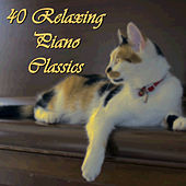 Play & Download 40 Relaxing Piano Classics by Various Artists | Napster