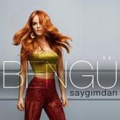 Play & Download Saygımdan by Bengü | Napster
