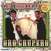 Play & Download Oro Grupero by Los Terricolas | Napster