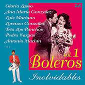 Play & Download Boleros Inolvidables, Vol. 1 by Various Artists | Napster