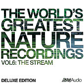 The World's Greatest Nature Recordings, Vol. 6: The Stream (Deluxe Edition) by Global Journey