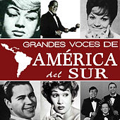Grandes Voces de América del Sur by Various Artists
