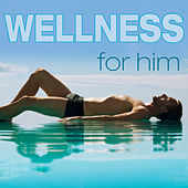 Wellness for Him by Various Artists