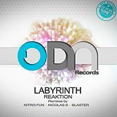 Labyrinth by The Reaktion