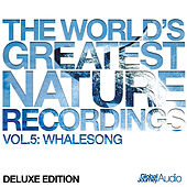 The World's Greatest Nature Recordings, Vol.5: Whale Song (Deluxe Edition) by Global Journey
