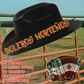 Play & Download Boleros Norteños by Various Artists | Napster
