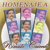 Play & Download Homenaje a Romulo Caicedo by Various Artists | Napster