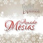 Play & Download Amado Mesías by Gadiel Espinoza | Napster