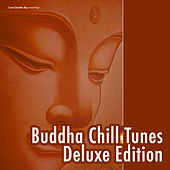Play & Download Buddha Chill Tunes - Deluxe Edition by Various Artists | Napster