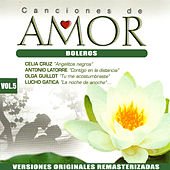 Canciones de Amor Vol.5: Boleros by Various Artists