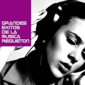 Grandes Exitos de la Musica Regueton by Various Artists
