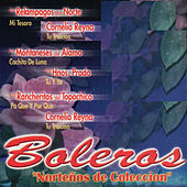 Play & Download Boleros Nortenos de coleccion by Various Artists | Napster