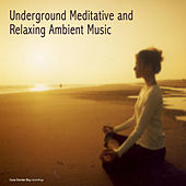 Play & Download Underground Meditative and Relaxing Ambient Music by Various Artists | Napster